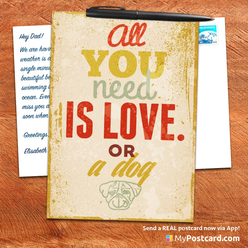 Mypostcard Greeting Card Inspirational Quote Vintage All You Need Is Love Or A Dog