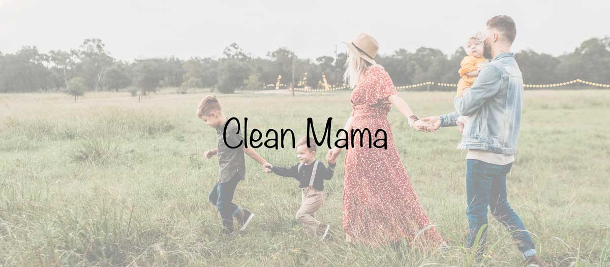 Mom lifestyle blogs ranking - Clean mama