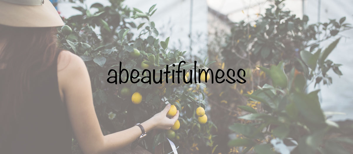 Top Lifestyle Blogger on Instagram - Abeautifulmess