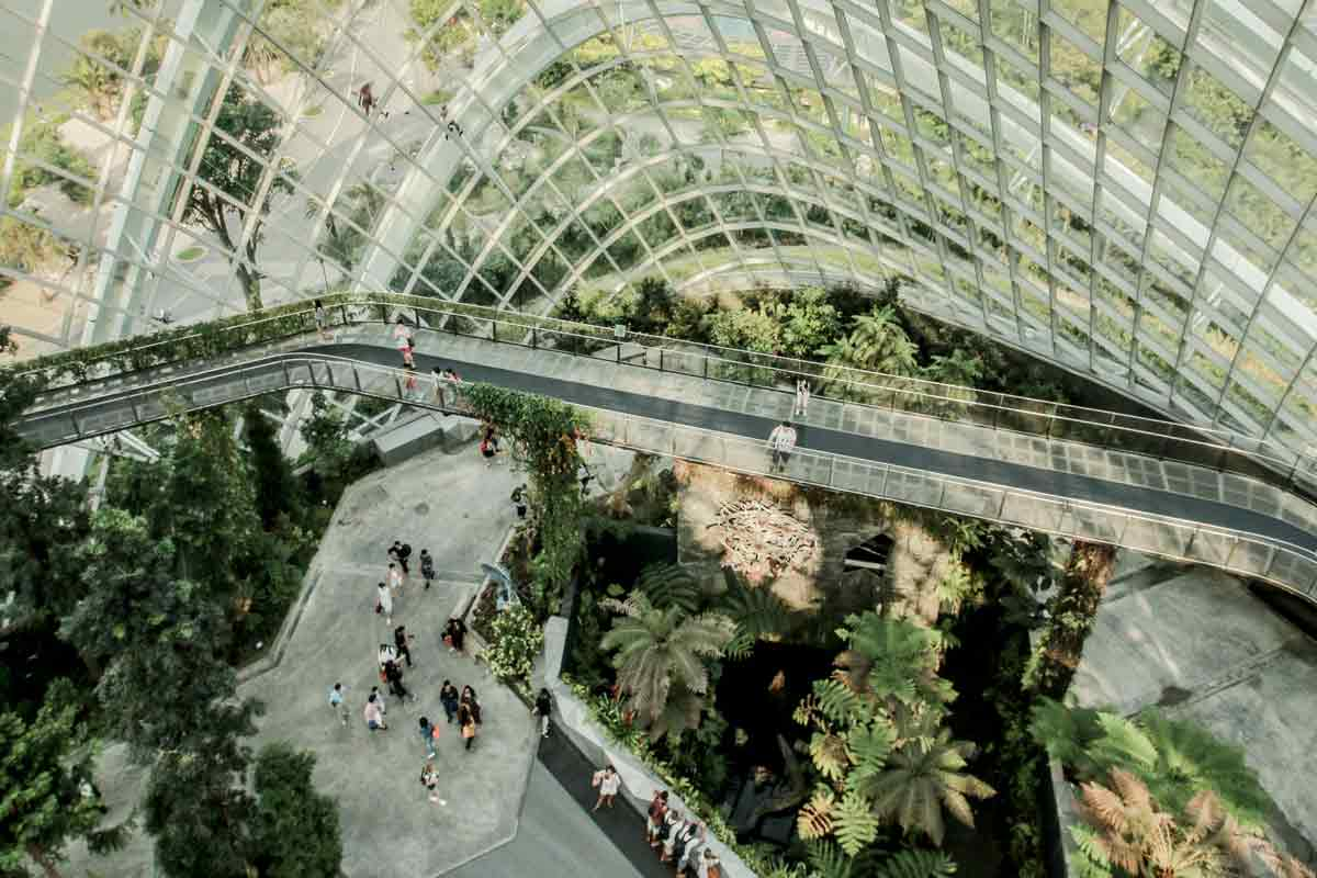Summer in Asia in Singapore, Cloudforest
