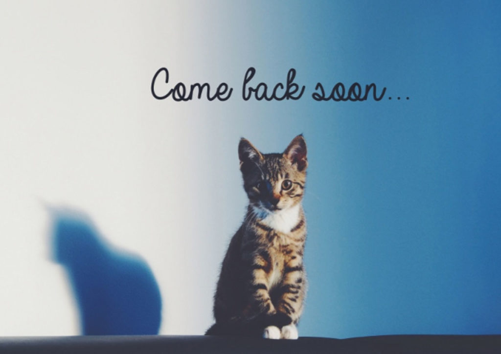 Valentine's Day Greetings - Come back soon Cat