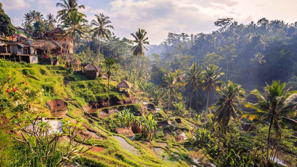 Places to go in 2019 - Ubud, Bali