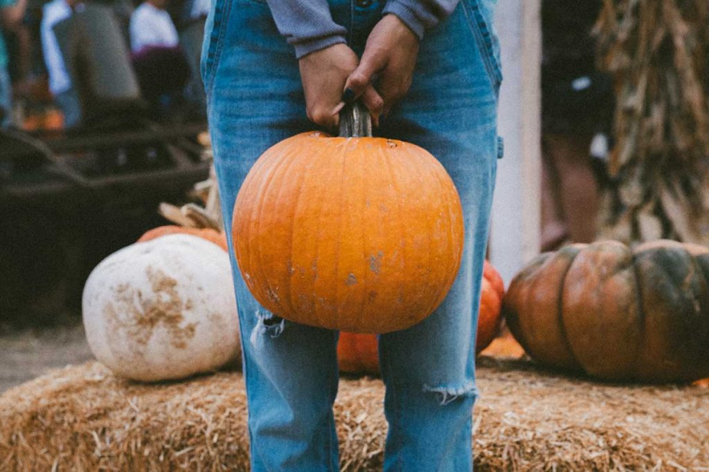 Halloween around the world tradition carving pumpkins