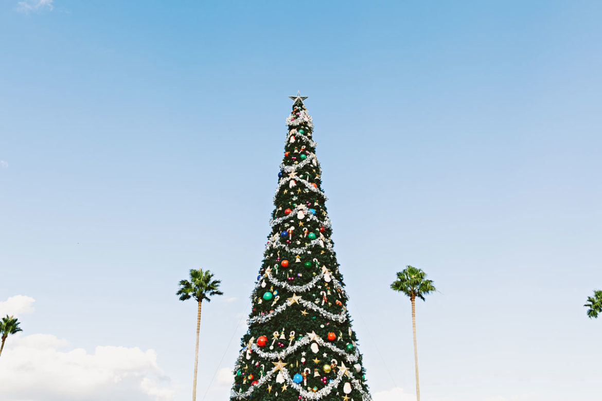 Christmas tree on light blue sky with palms