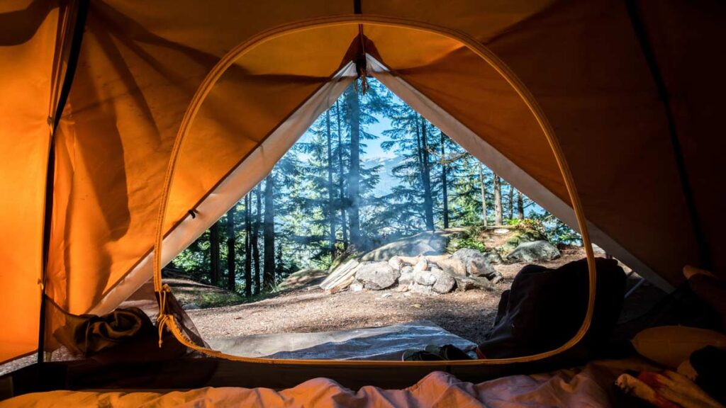 Camping photography from inside the tent looking at the woods
