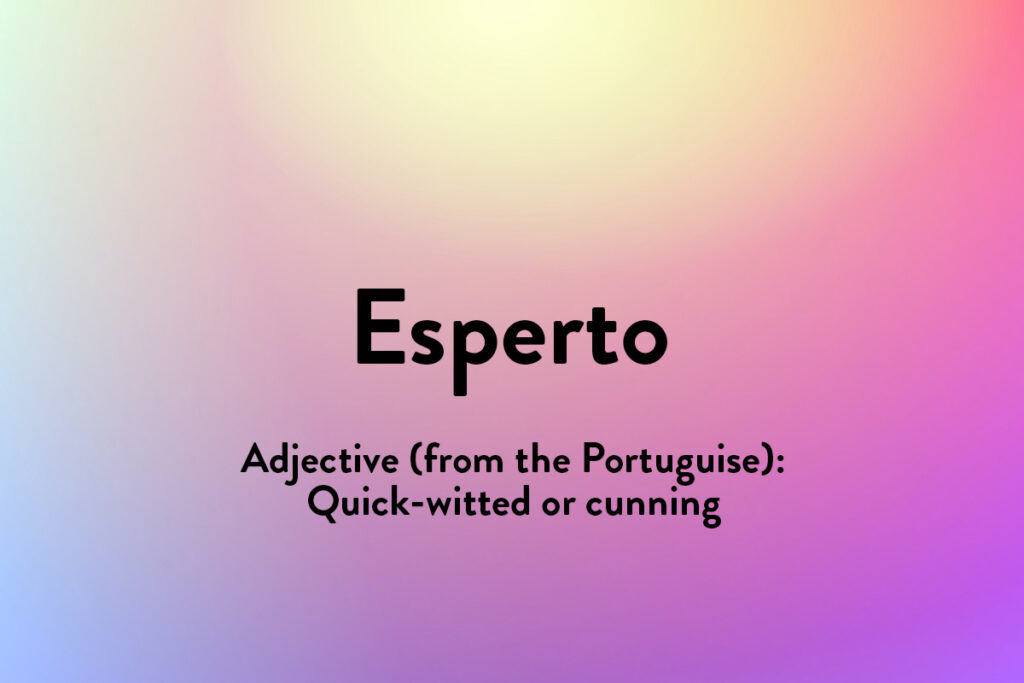 Esperto or esperta are two inspiring words in other languages (inlcuding Portuguise and Mexican) here meaning quick witted