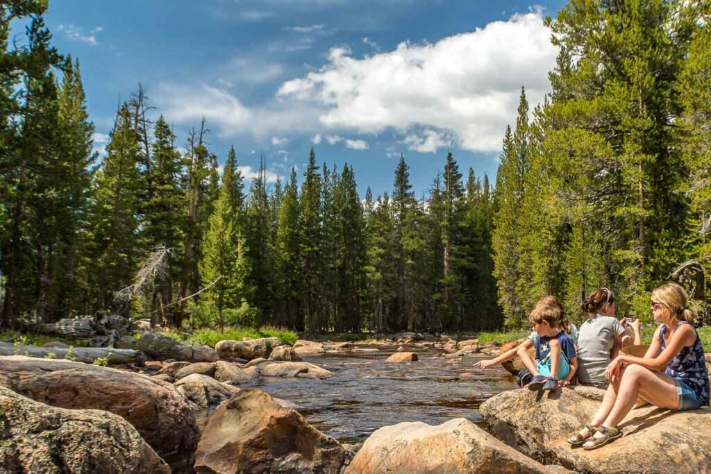 The family from this camping blog sit on the shore of a small river mid-forest.