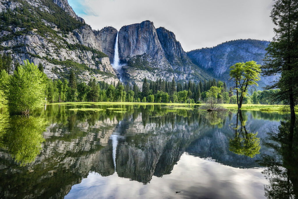 Cliffs and forest reflected perfectly in still water